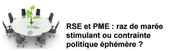 RSE et PME1